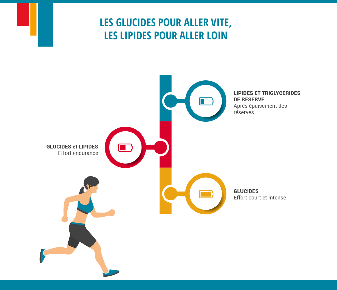 infographie micronutrition sportive