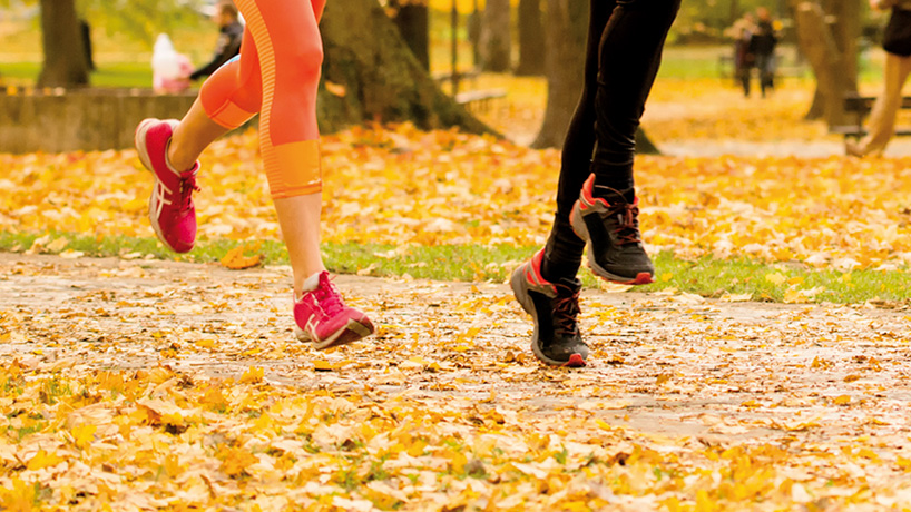 Automne : intersaison sportive et alimentation